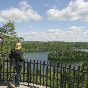 VM_849_vesistö_kesä_hämeenlinna_aulanko_kansallismaisema_maisema_järvi